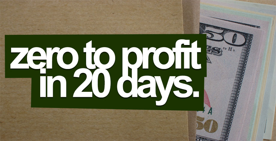 Zero to Profit in Just 20 Days