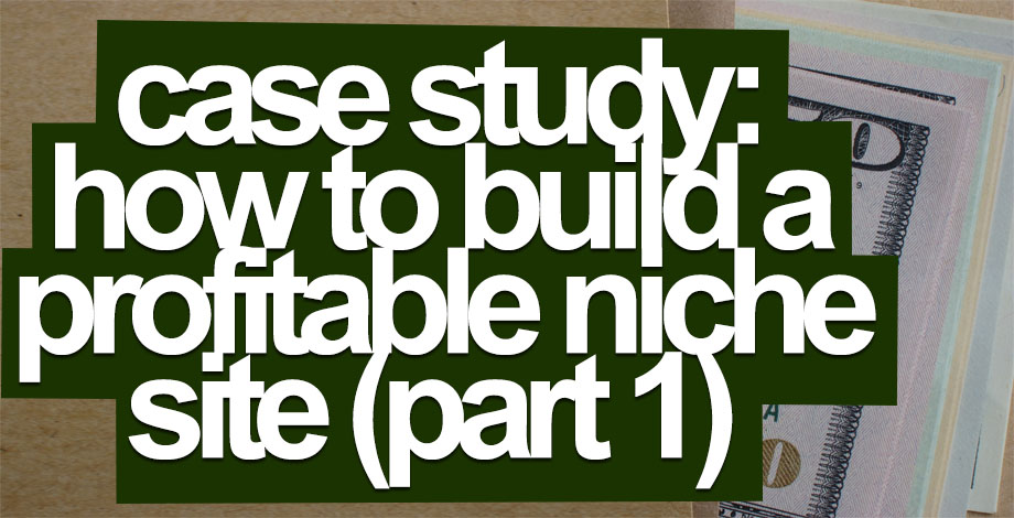 Case Study: How to Build a Profitable Niche Website (Part 1)