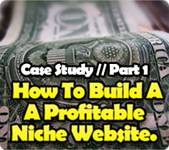 Build a Profitable Niche Website