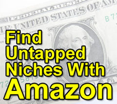 Find Profitable Niches with Amazon